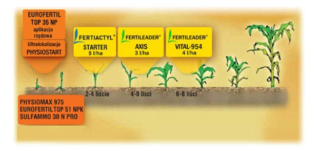Kompleksowy-program-odżywiania-kukurydzy