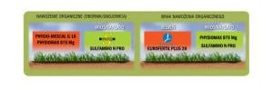 Kompleksowy-program-odżywiania-trwałych-użytków-zielonych