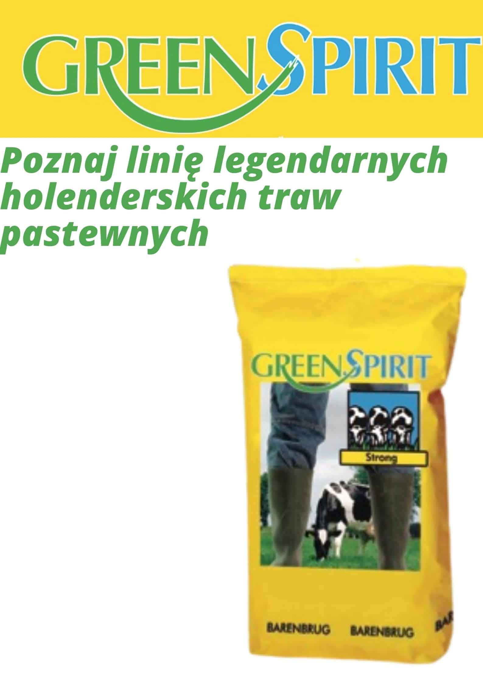 Poznaj linię legendarnych holenderskich traw pastewnych